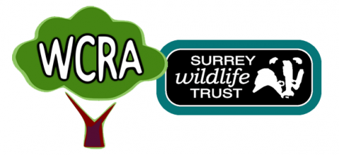 Surrey Wildlife Trust to provide free conservation course in Westfield | 19 Aug 15